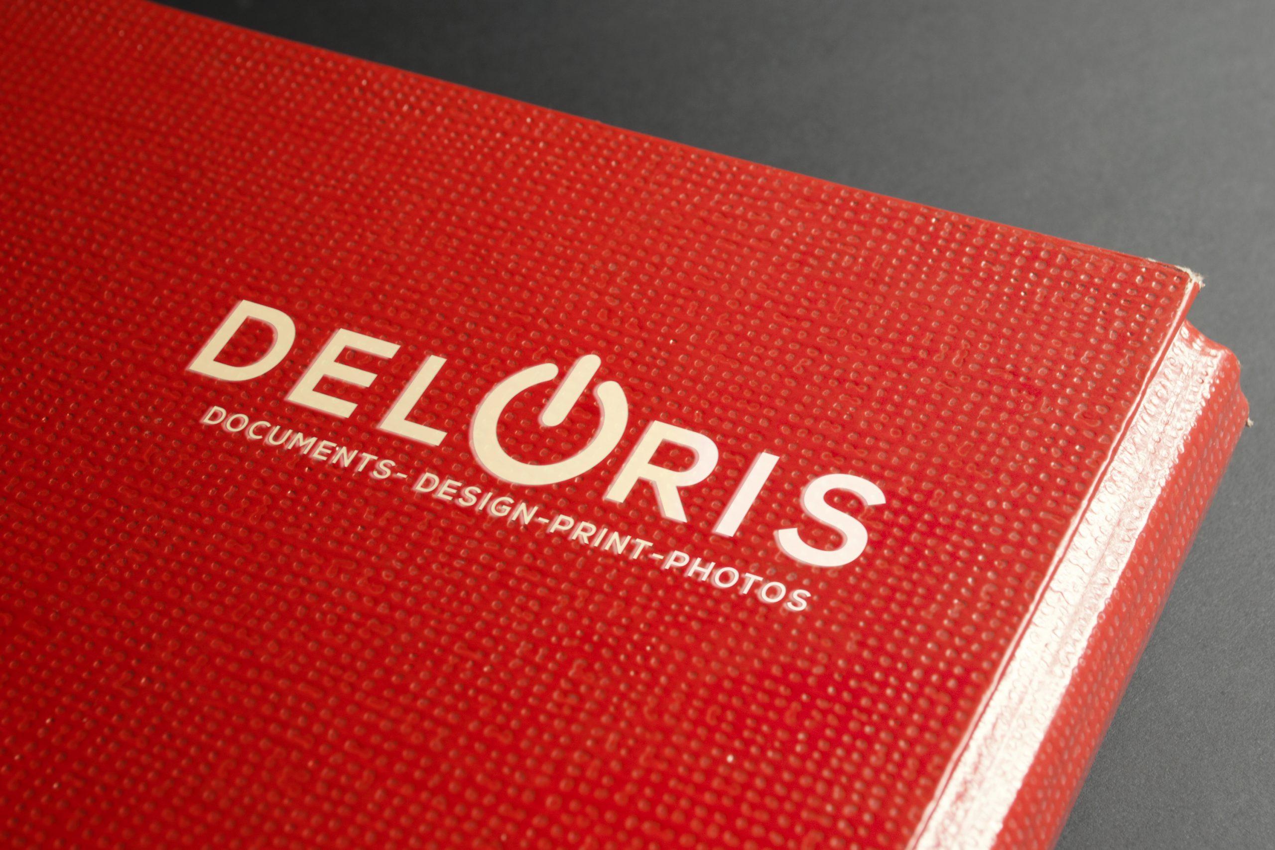Deloris Logo